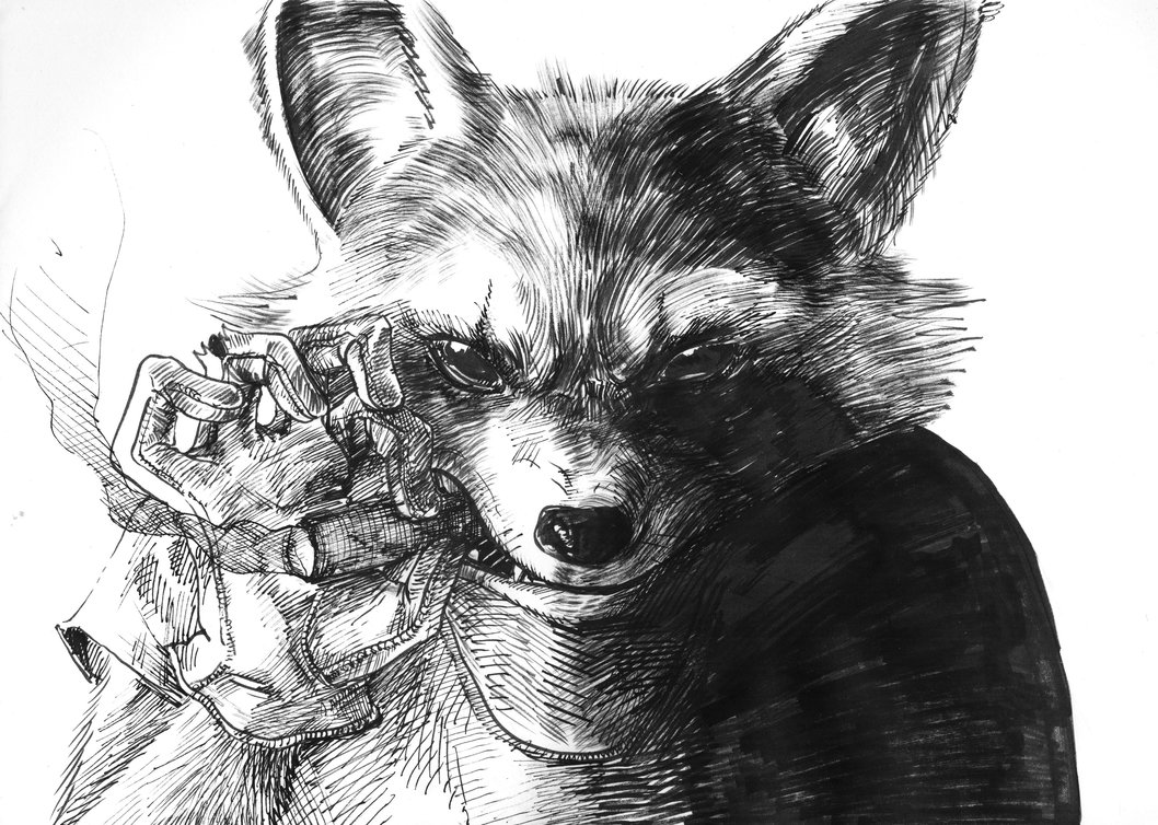 Drawn racoon deviantart Raccoon zobly on Rocket Raccoon