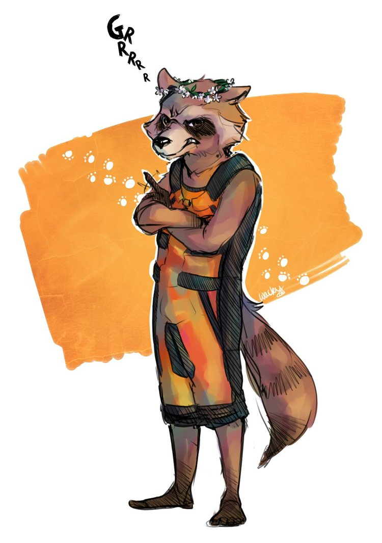 Drawn racoon deviantart Raccoon Prize by on Wacky06