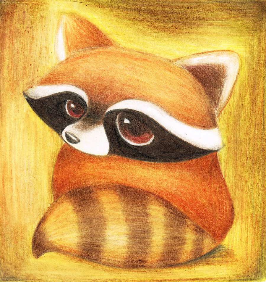 Drawn racoon deviantart By by lovelylittlesunshine DeviantArt by