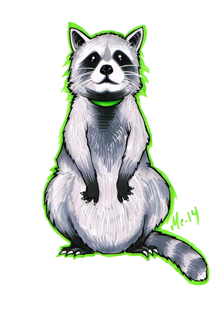 Drawn racoon deviantart The Raccoon by on BleedingHeartworks