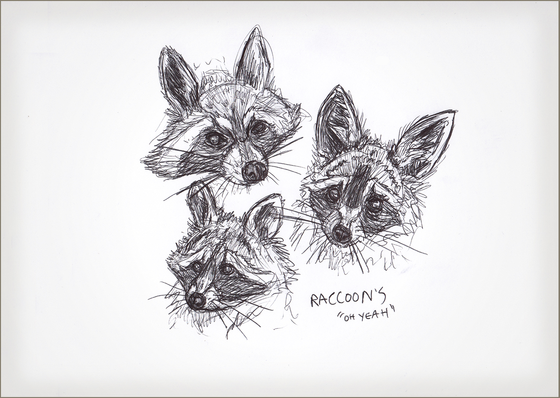 Drawn racoon face Raccoon FiddzyDesign Faces Challenge Lunch