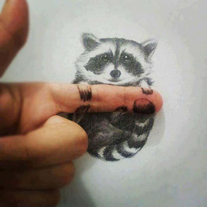 Drawn racoon funny Camera best this on pencil