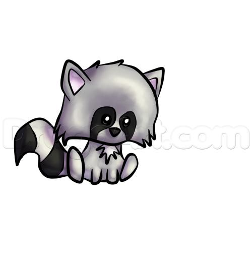Drawn raccoon kawaii A to Step Animals cute