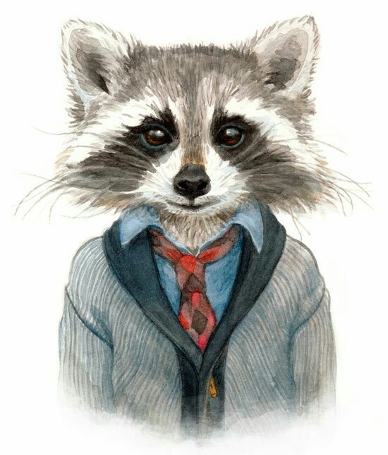 Drawn racoon little Art and more Print TD4321