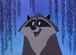 Drawn raccoon disney FANDOM to by Wikia Disney