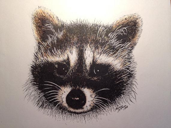Drawn racoon pen and ink Vintage Ink Print Vintage Raccoon