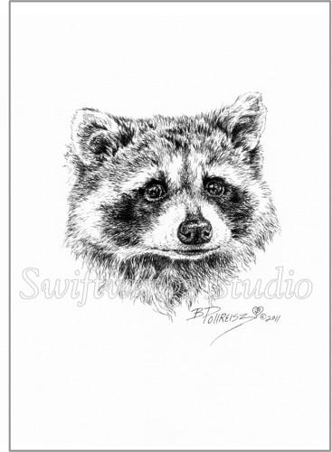 Drawn raccoon pen and ink  _wildlife_art_ _wildlife_decor_fe44adfc _pen_and_ink_art_ jpg
