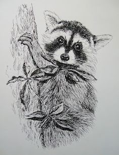 Drawn racoon pen and ink Pen Little Raccoon by on
