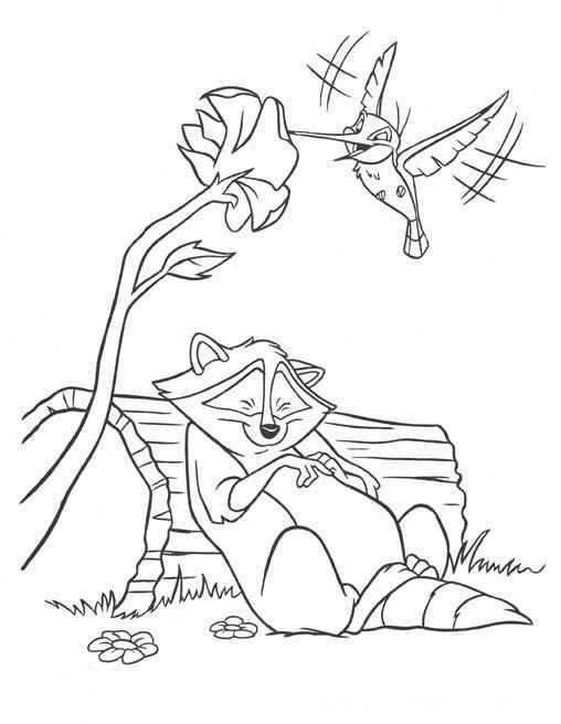 Drawn racoon pocahontas Pocahontas coloring and raccoon bird