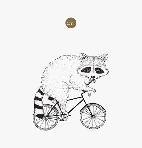 Drawn racoon racoon 25+ Pinterest A illustration art