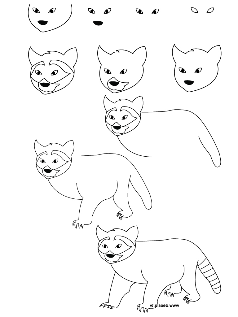Drawn racoon simple Art Drawing Racoon Simple Drawing