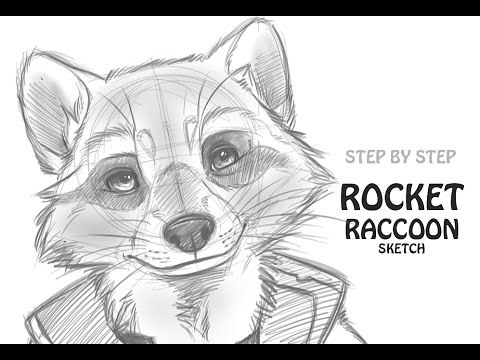 Drawn raccoon sketch Raccoon: to Rocket Guardians draw