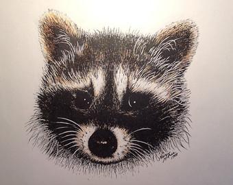 Drawn raccoon pen and ink Sketch Vintage Head Raccoon Ink