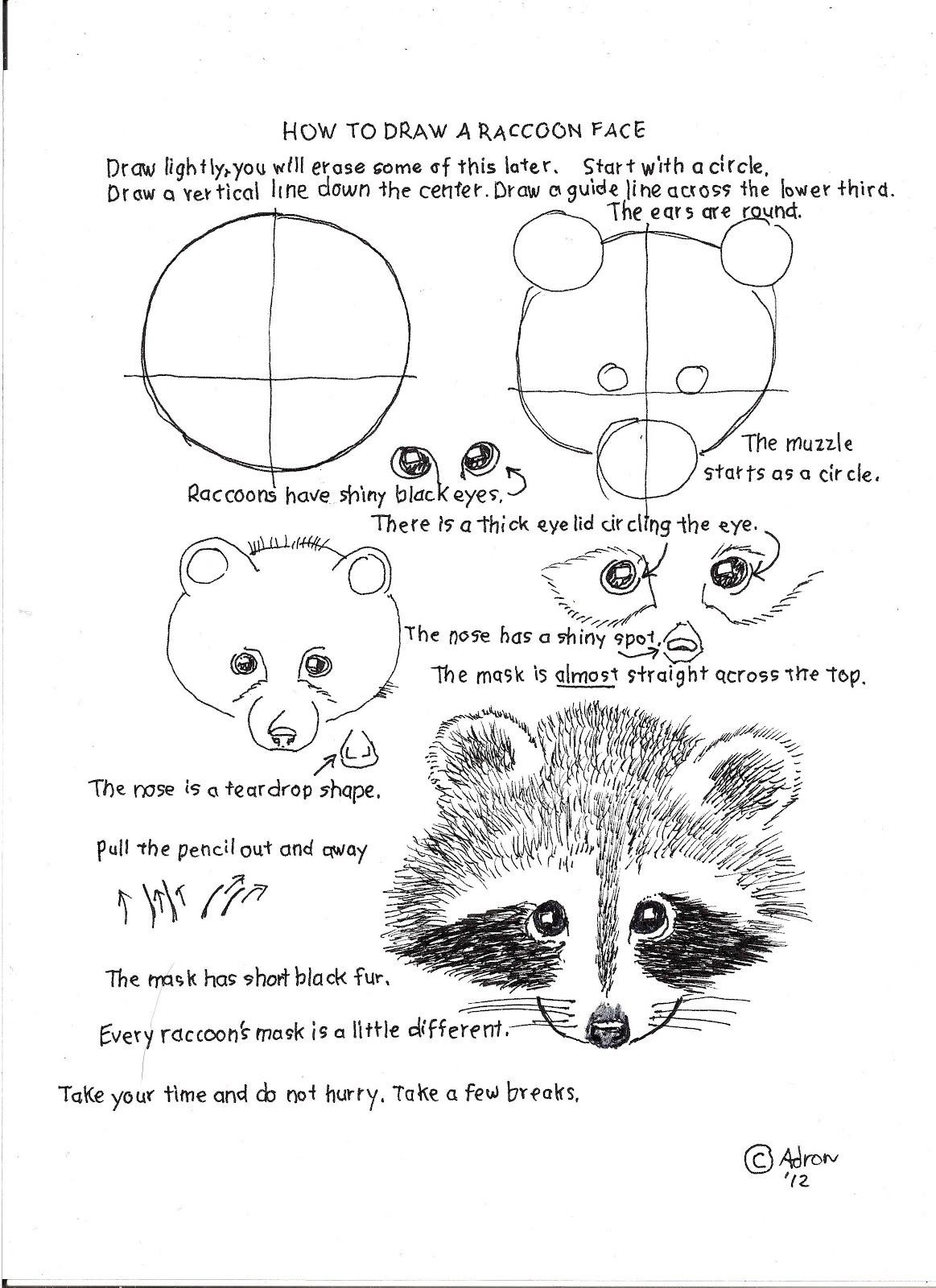 Drawn racoon tree drawing To Lesson Raccoon How Worksheets