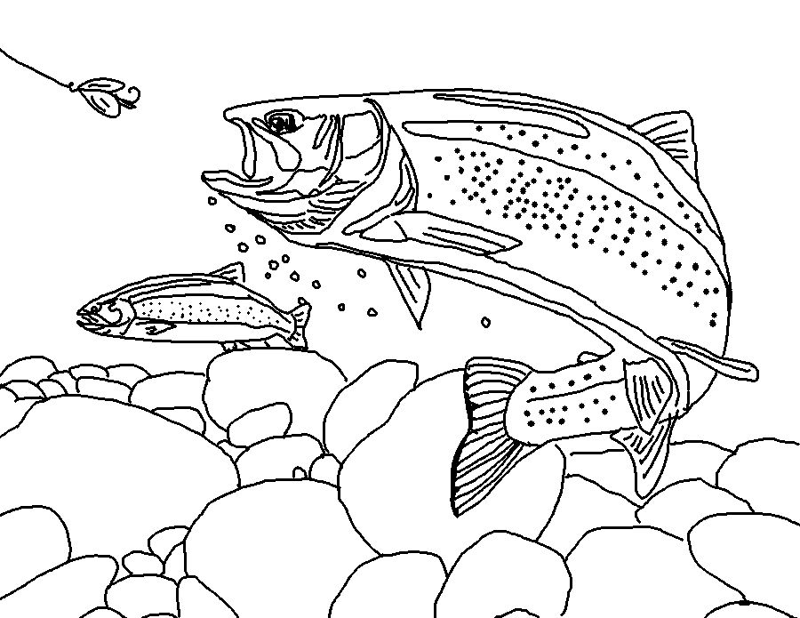 Drawn rainbow printable Page Trout Trout  Free