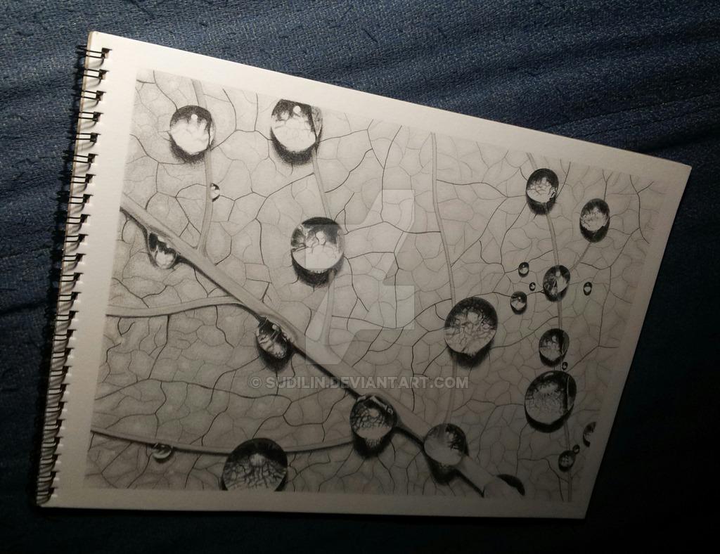 Drawn raindrops realistic Leaf by SudiLin DeviantArt On