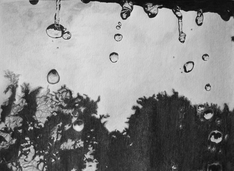 Drawn raindrops tree Life by Jain Neelesh Raindrop's