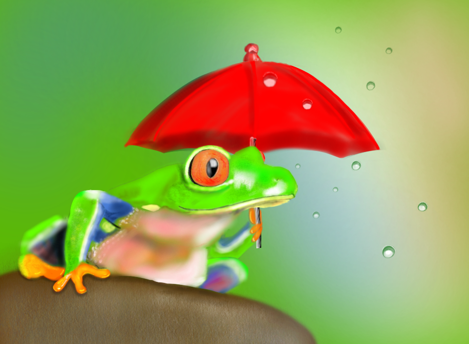 Drawn raindrops tree To was frog so draw