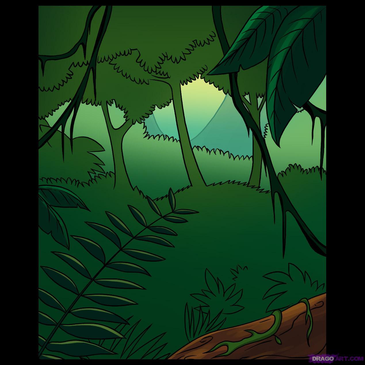 Drawn rainforest A Rainforest a by Draw