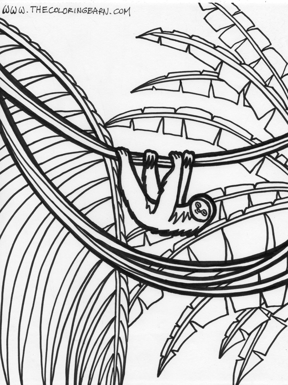 Drawn rainforest animated Pages Coloring Pages Rainforest Rainforest
