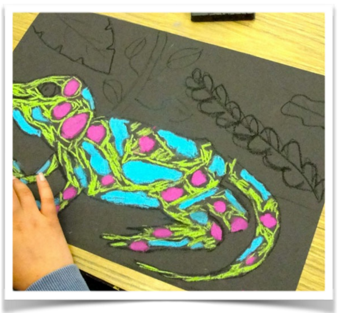 Drawn rainforest art ks2 But Video really doesn't because