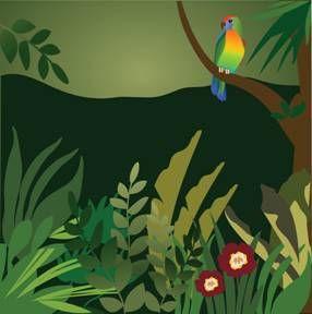 Drawn rainforest collage ks2 Rainforest Collage Rainforest 17 Best