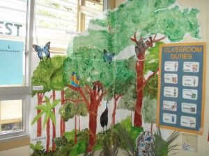 Drawn rainforest display ks2 Best images on displays 39