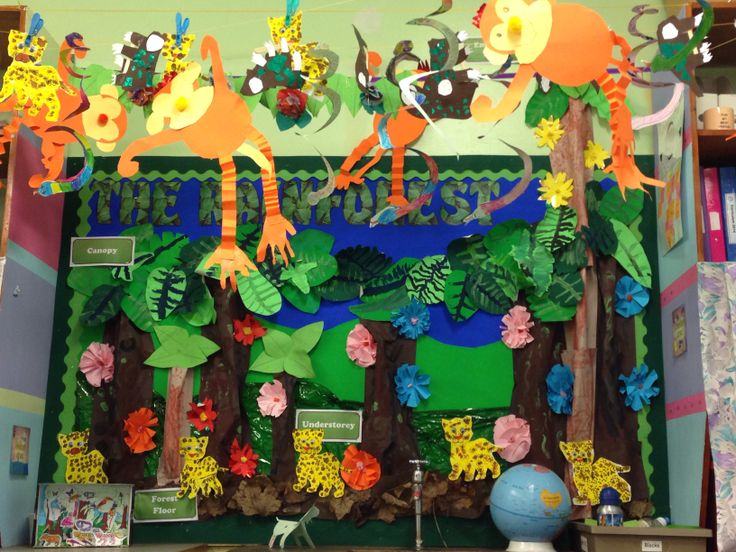 Drawn rainforest display ks2 Displays Pinterest on best Rainforest