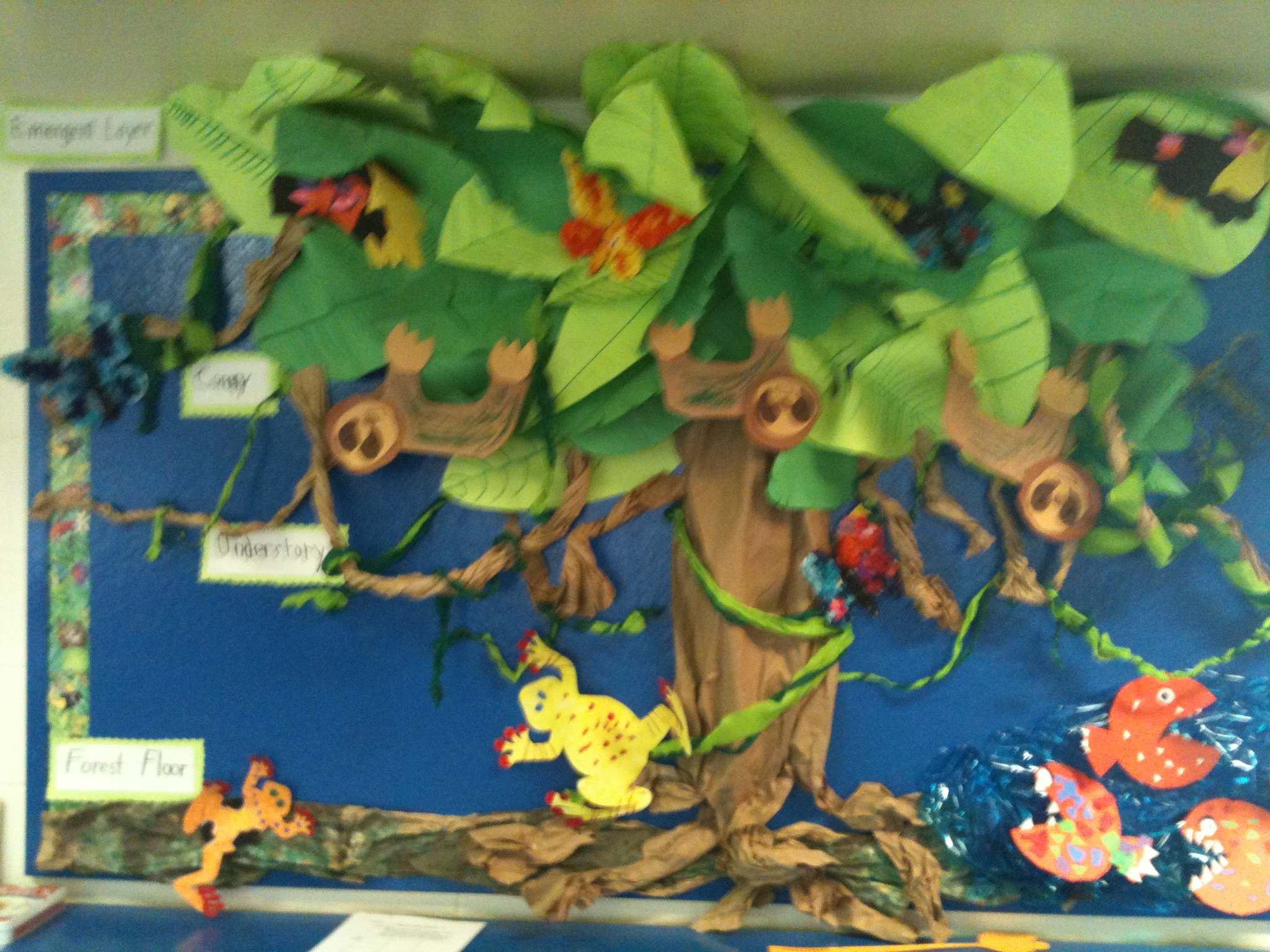 Drawn rainforest display ks2 From I my students a