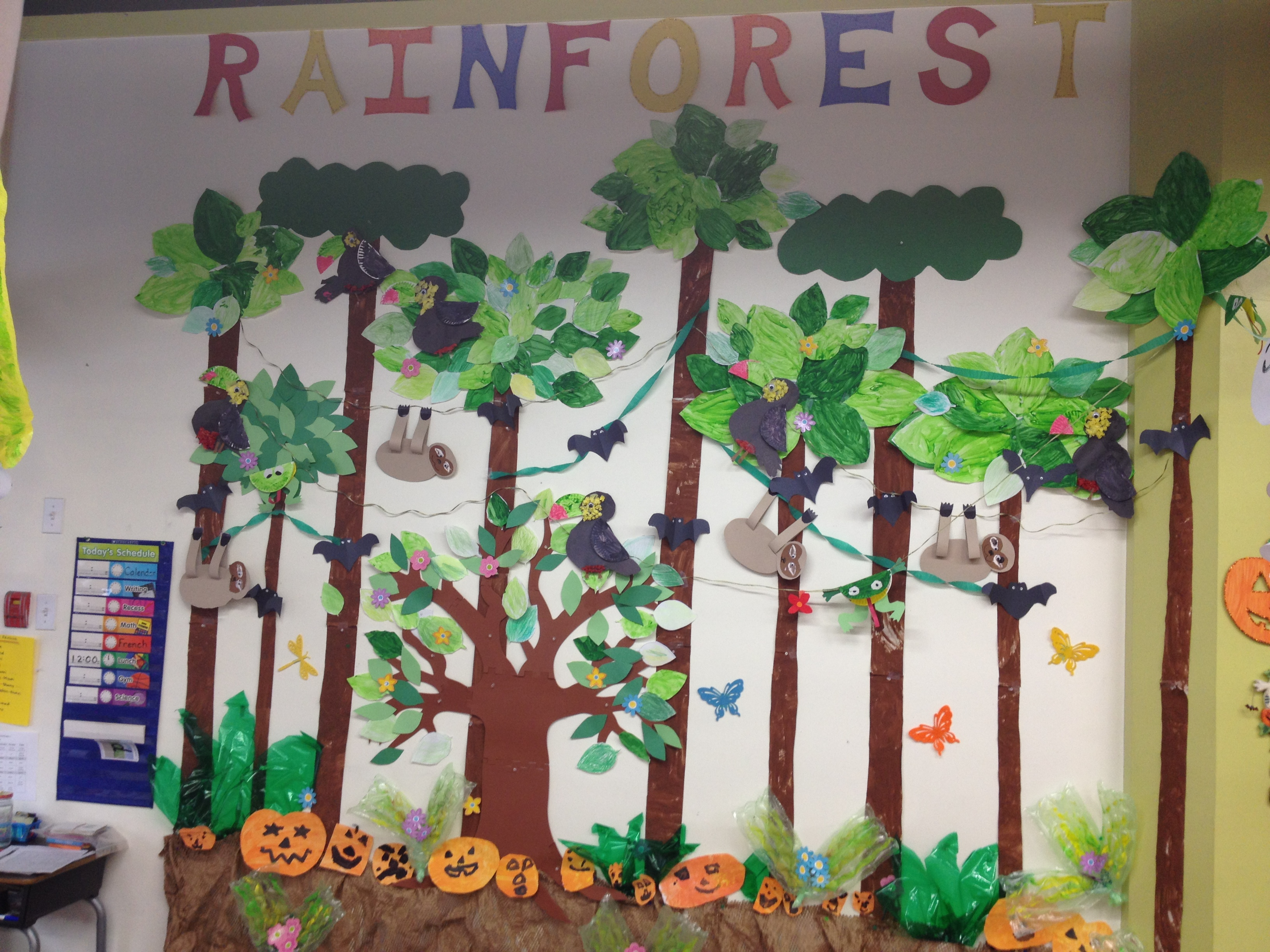 Drawn rainforest display ks2 Crafts Rainforest classroom Pinterest Classroom