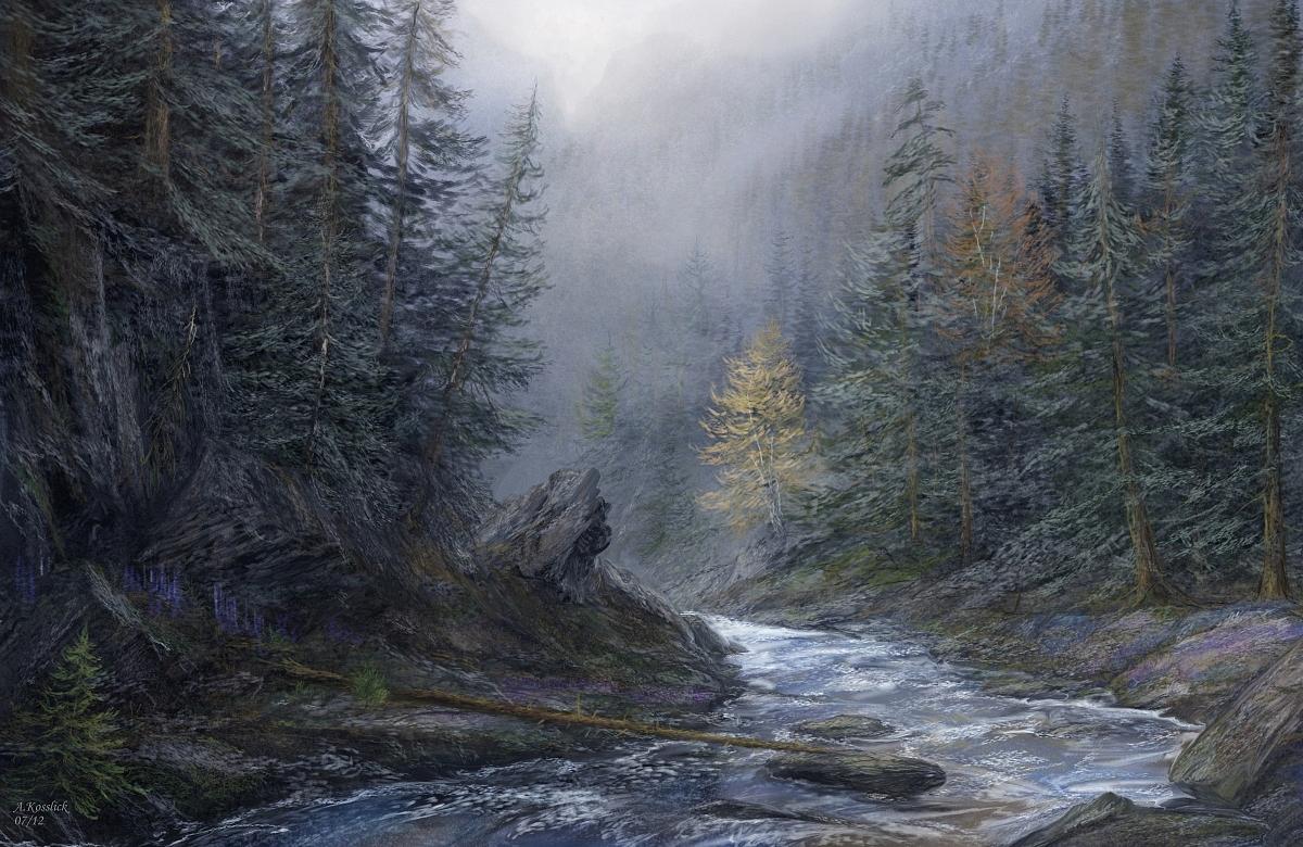 Drawn rainforest forest river Update Rainforest DeviantArt andrekosslick Coloring