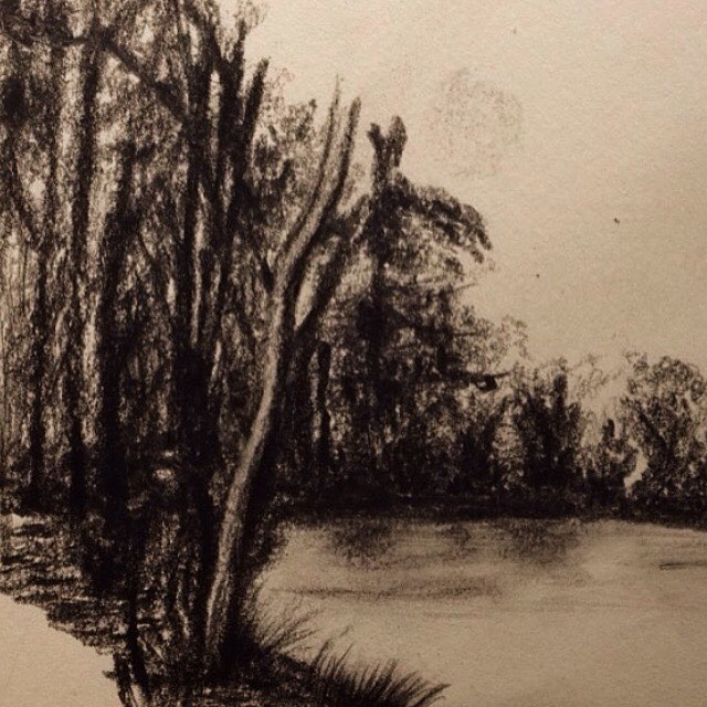 Drawn rainforest forest river For drawing that river Charcoal
