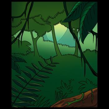 Drawn rainforest jungle Draw by Rainforest Landmarks a