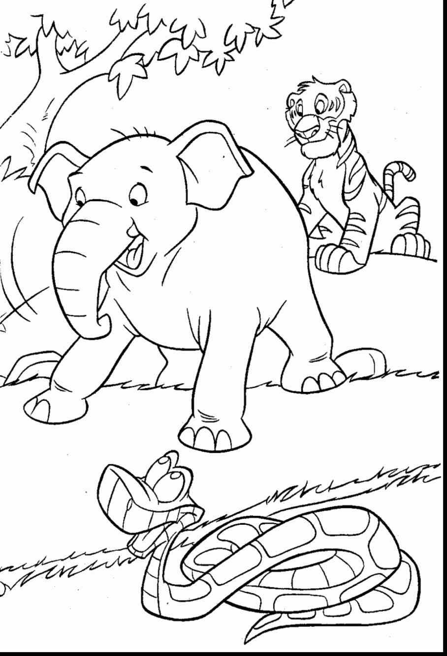 Drawn rainforest jungle scenery Coloring Jungle scene pinterest pages