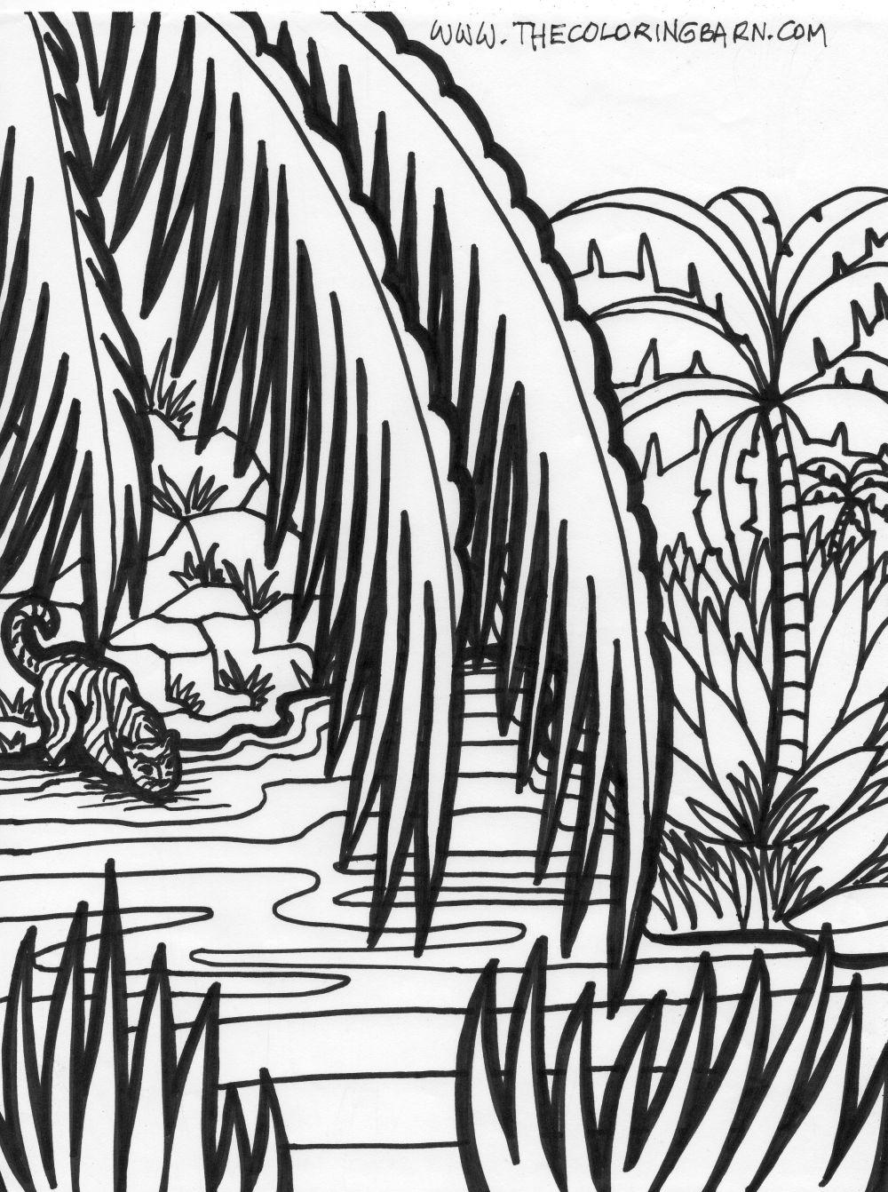 Drawn rainforest jungle scenery Coloring Jungle Rainforest Coloring Scene
