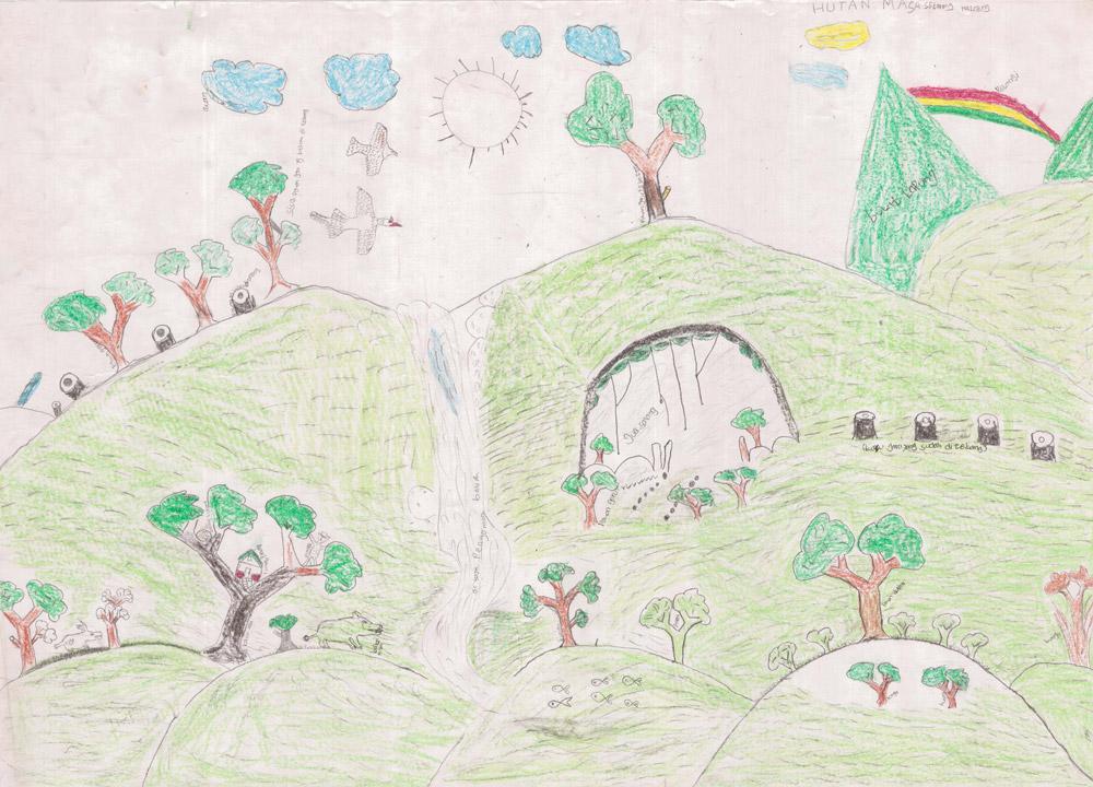 Drawn rainforest natural environment Their environment their environment ravaged