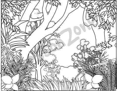 Drawn rainforest natural environment B&W AU Zone 108705Z01_Rainforest_BW01 Rainforest