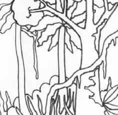 Drawn rainforest rainforest tree Printable Rainforest rainforest coloring sheets