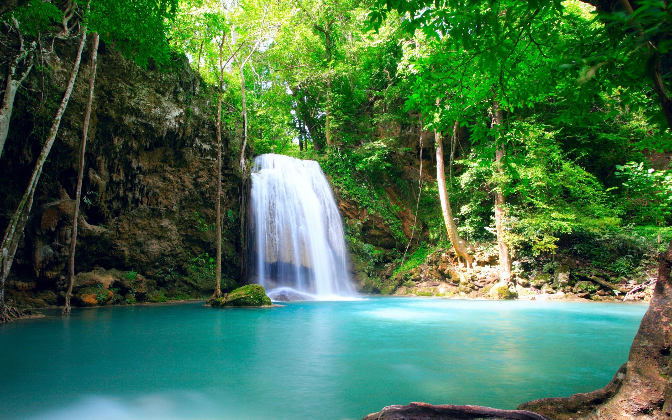 Drawn rainforest rainforest waterfall Beautiful http Background on wallpaper