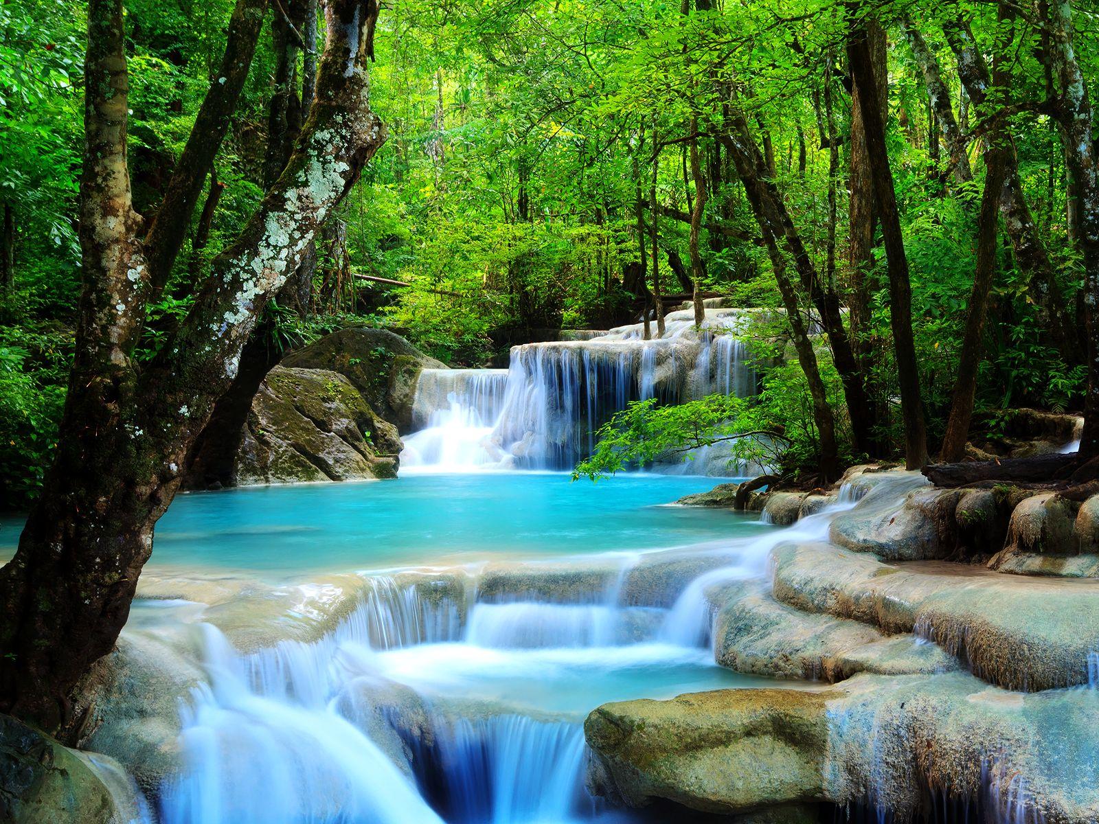 Drawn rainforest rainforest waterfall Japanese  Drawing wallpaper Waterfall