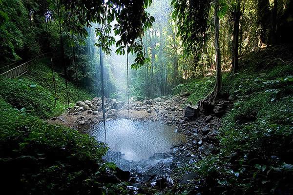 Drawn rainforest rainforest waterfall 49 jpg waterfall Rainforest