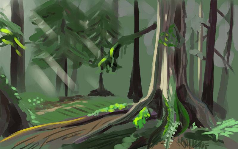 Drawn rainforest temperate rainforest Rainforest Temperate by chromatic anti