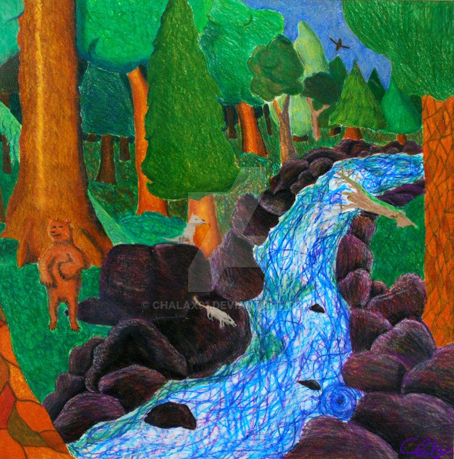 Drawn rainforest temperate rainforest Chalax91 by Temperate DeviantArt Temperate