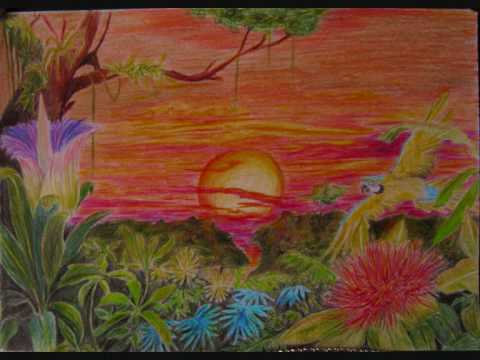 Drawn rainforest tropic A coloured rainforest sunset to