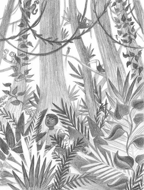 Drawn rainforest tropical forest Rain rainforest  Tropical Rainforest