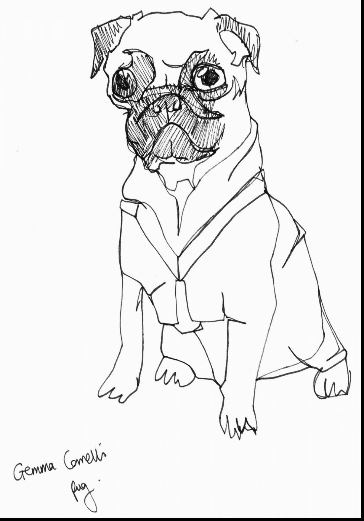 Drawn pug fabulous Pug coloring coloring correll pages