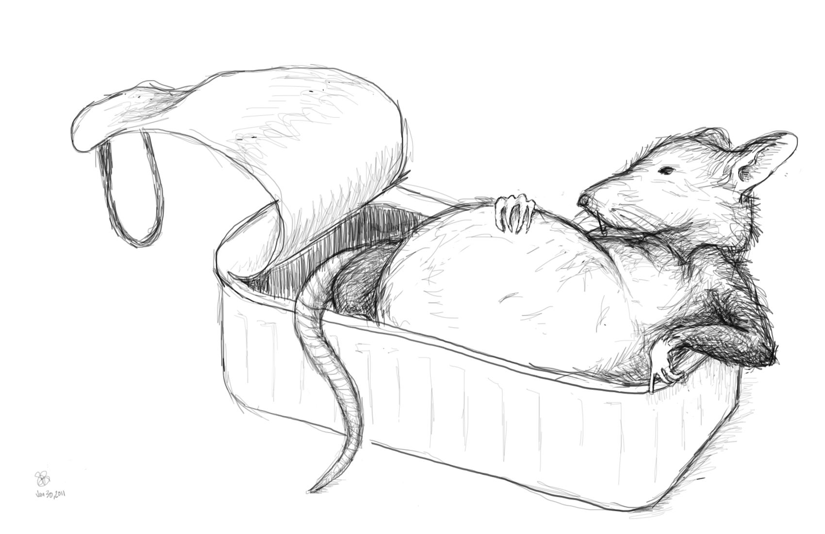 Drawn rat Tinned — Bad Rat Tinned