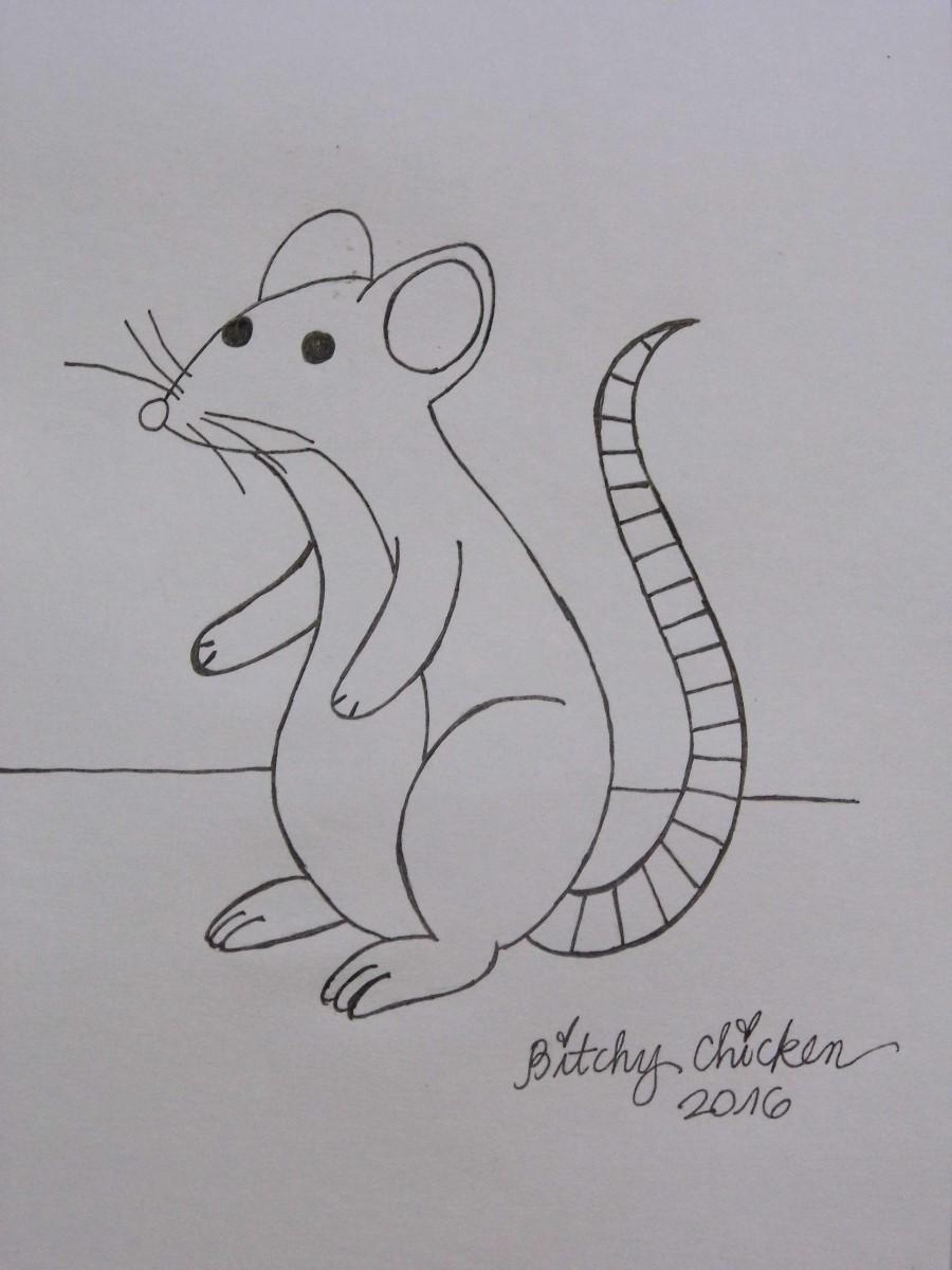 Drawn rat beginner Sheet Pencil How Rat A