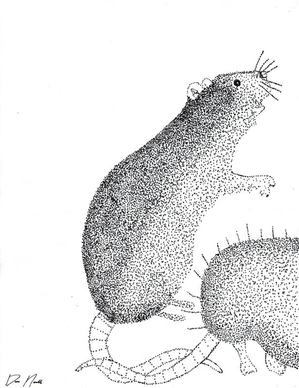 Drawn rat bubonic plague By Death DeviantArt The LadyJinx