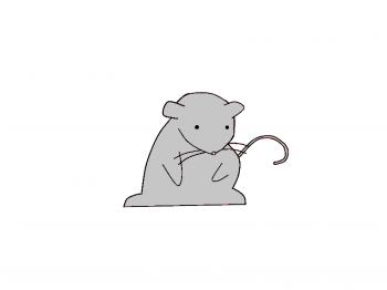 Drawn rat chibi Rat Characters Anime Step To